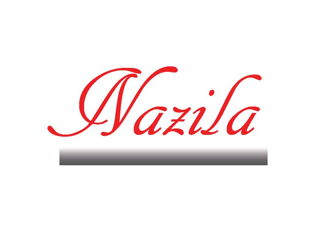 Nazila Tavakkolinamin